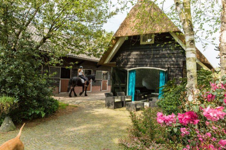 Woudstee paardenstallen overnachten op de Veluwe met je paard