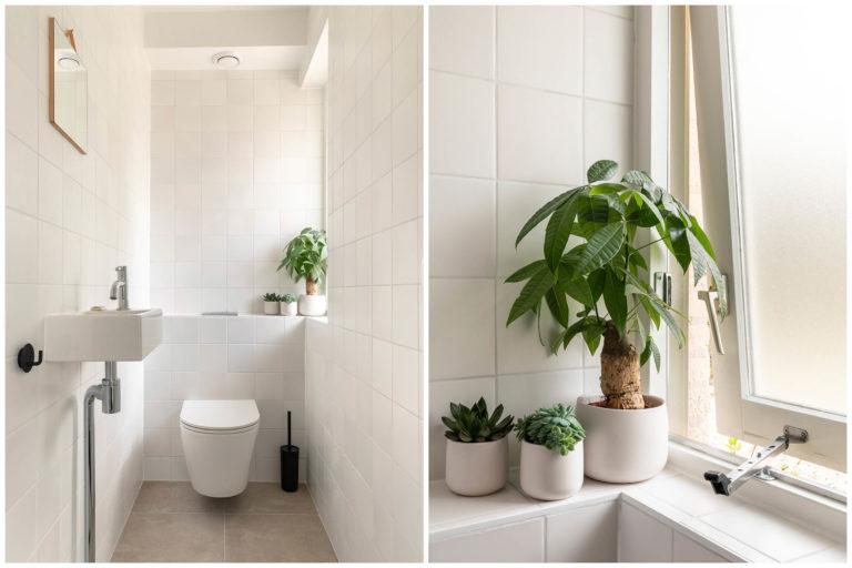 Woudstee Cornelia toilet met wc apart