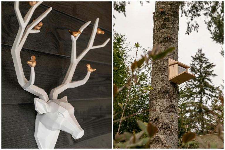 Woudstee Cornelina veranda, vakantie in de natuur met eekhoorn