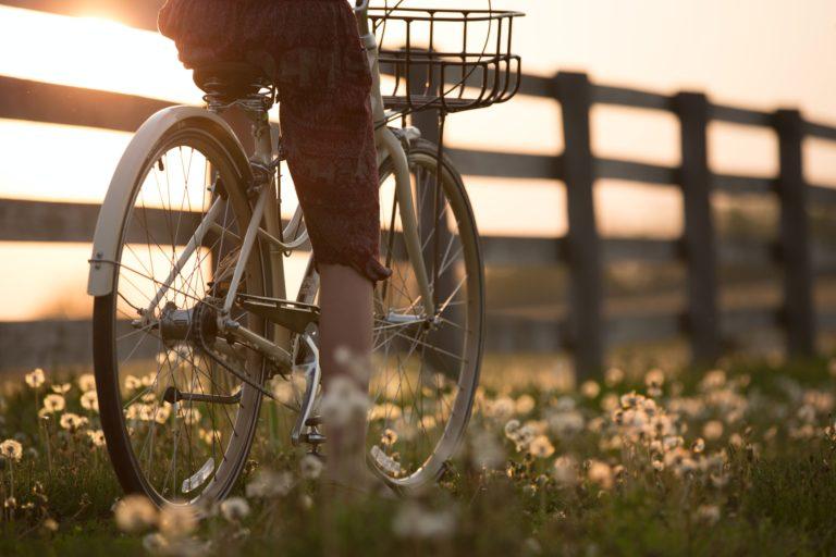 Huur een fiets tijdens je vakantie op de Veluwe bij WoudStee
