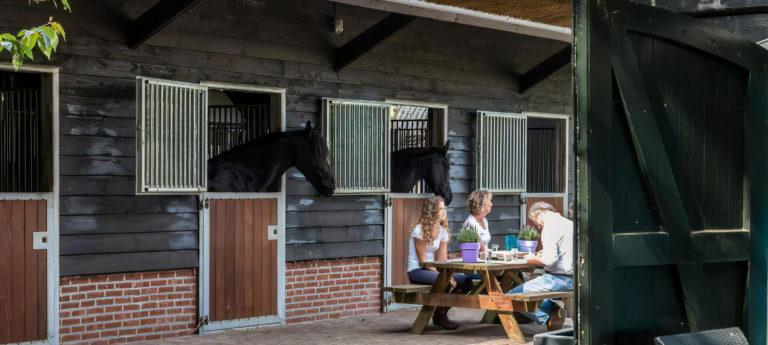 WoudStee met eigen paard op de Veluwe op vakantie