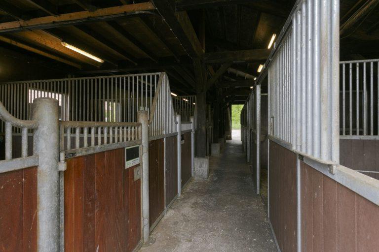 De paardenstallen van WoudStee interieur