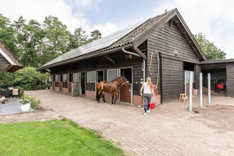 Antonia buitenkant paardenstallen bij Woudstee