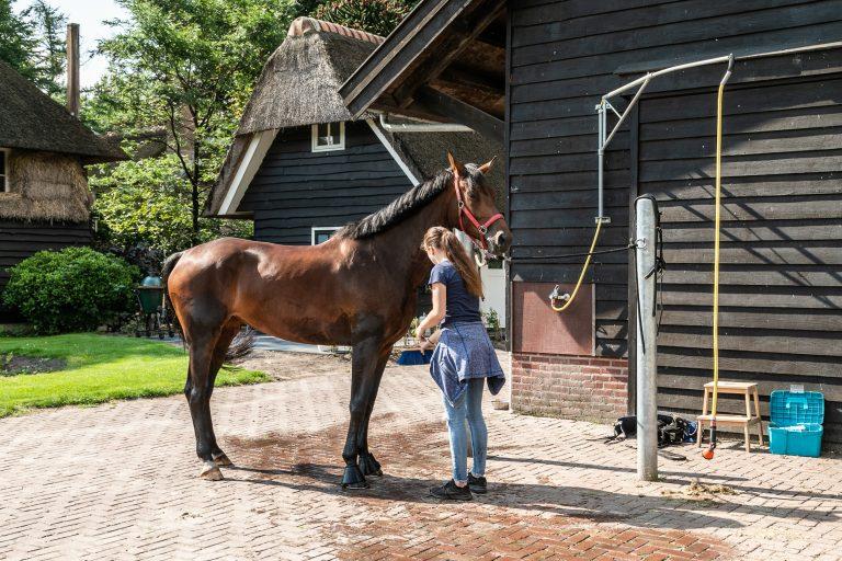Antonia paardenstal meisje met paard bij Woudstee