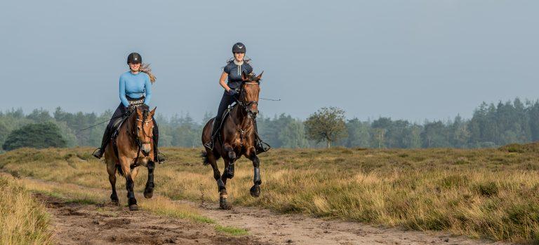 image00001paardrijden vlakbij woudstee luxe vakantie paarden veluwe