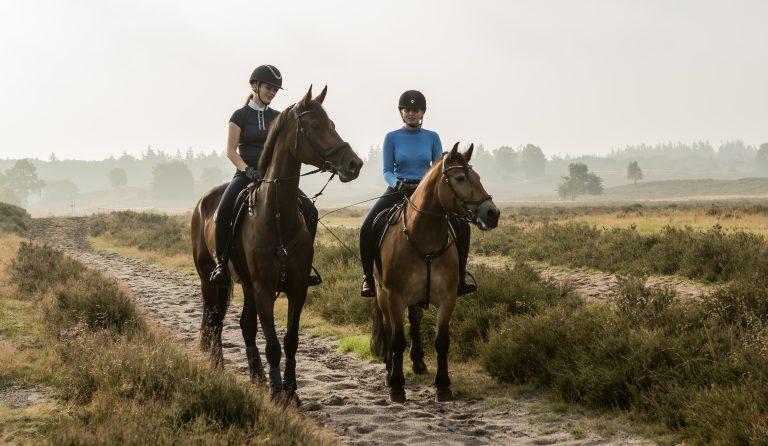 paardrijden vlakbij woudstee luxe vakantie op de veluwe