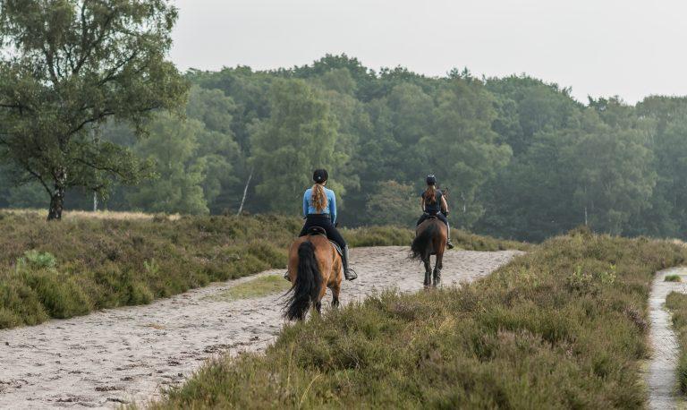 WoudStee paardrijden vakantie eigen paard veluwe Maaike Charlotte