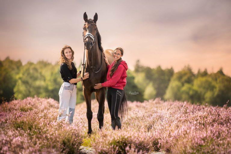 Met je paarden op vakantie naar Epe op de Veluwe